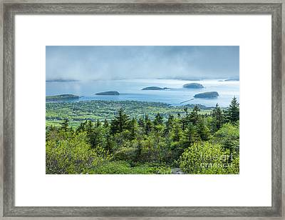 Clearing Fog Over Frenchman Bay In Acadia Framed Print by Susan Cole Kelly