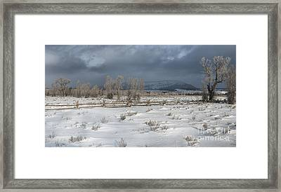 Clearing Storm In The Tetons Framed Print by Sandra Bronstein
