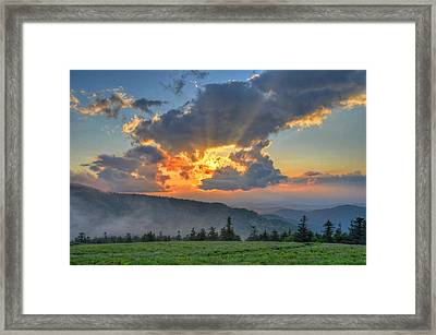Clearly Divine Framed Print by Mary Anne Baker
