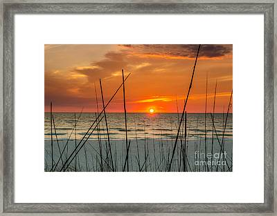 Clearwater Sunset 2 Framed Print by Mike Ste Marie