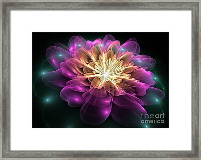 Clematis Magica Framed Print