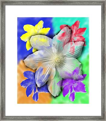 Clematis Osmosis One Framed Print