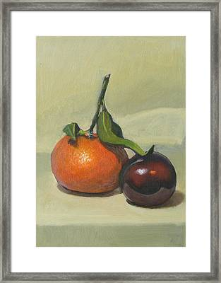 Clementine And Plum Framed Print by Peter Orrock