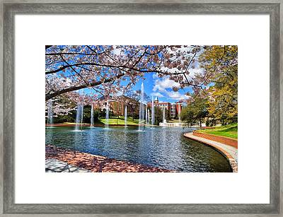 Clemson University Springtime Framed Print