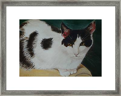Cleo- Painting Framed Print by Veronica Rickard