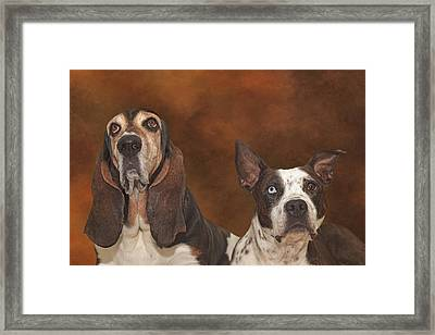 Cleopitra And Elvis  Framed Print by Brian Cross