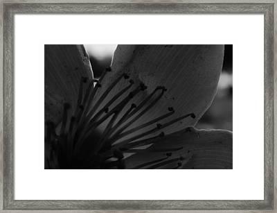 Click Here To Find God Framed Print by Tara Miller