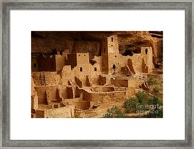 Cliff Palace Framed Print by Marty Fancy