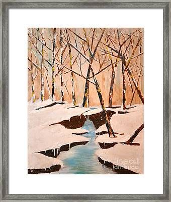Cliffy Creek Framed Print