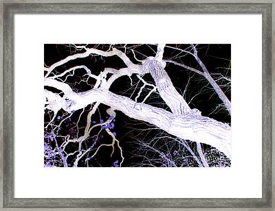Climb In Darkness Framed Print by Jamie Lynn