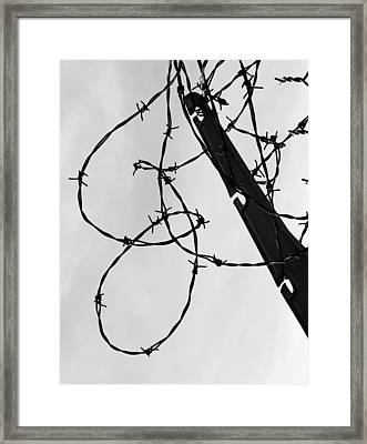 Climb To Snag  Framed Print