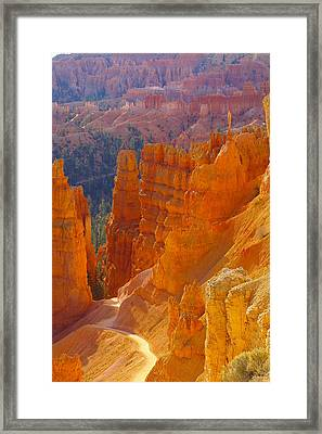 climbing out of the Canyon Framed Print by Jeff Swan