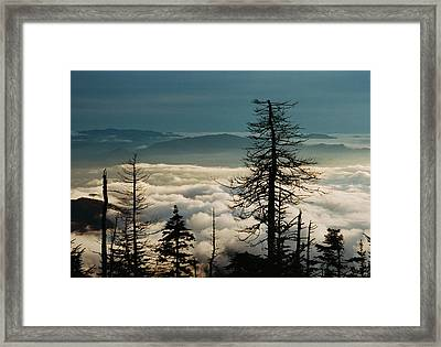 Framed Print featuring the photograph Clingman's Dome Sea Of Clouds - Smoky Mountains by Mountains to the Sea Photo