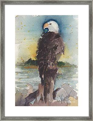 Clinton Eagle Framed Print