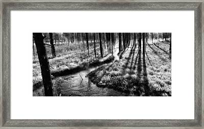 Cloaked In Crystals Framed Print by Mark Kiver