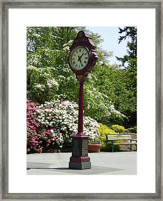 Framed Print featuring the photograph Clock In Park by Laurie Tsemak