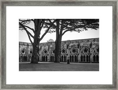 Cloisters Of Salisbury Framed Print by Ross Henton