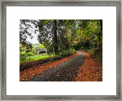 Clondegad Country Road Framed Print