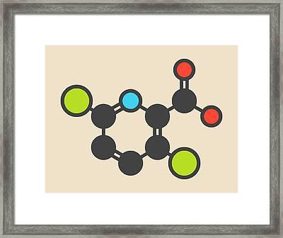 Clopyralid Herbicide Molecule Framed Print