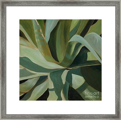Close Cactus Framed Print