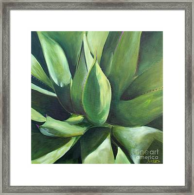 Close Cactus II - Agave Framed Print
