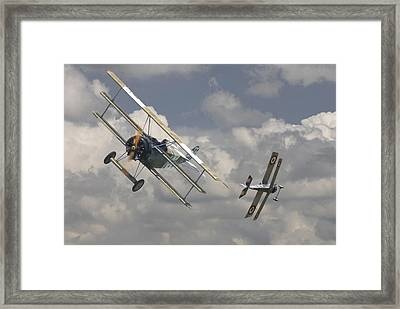 Close Encounter Framed Print by Pat Speirs