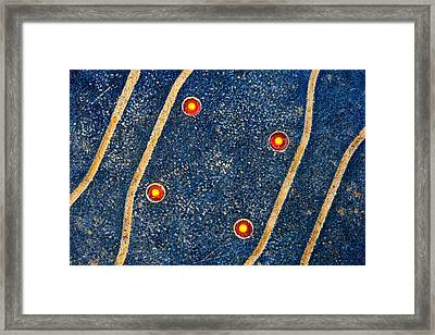 Close Encounters Of The Third Kind Framed Print by Alexander Senin