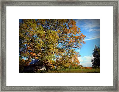 Close Friends Framed Print by Reid Callaway