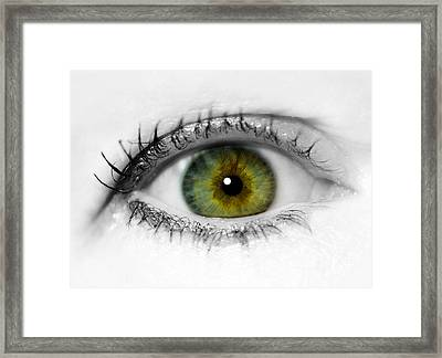 Close Up Eye Framed Print by Amanda Elwell
