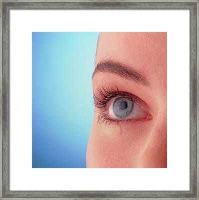 Close-up Of A Woman's Blue Eye With A Tear-drop Framed Print by Phil Jude/science Photo Library
