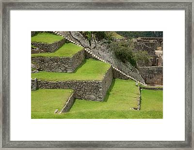 Close-up Of Agricultural Terraces Framed Print by Jaynes Gallery