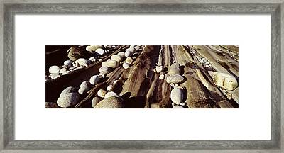 Close-up Of Stones, Pemaquid Framed Print