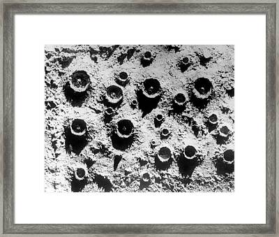 Close Up On The Moon Framed Print by Retro Images Archive