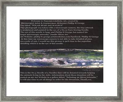 Close-up Photo No.1a Showcasing Polar Bear Needle No.4   Framed Print by Phillip H George