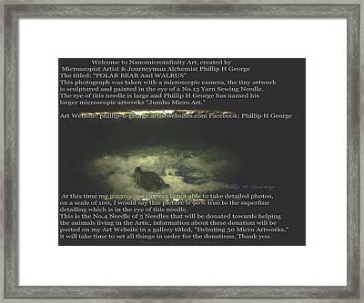Close-up Photo No.1b Showcasing Polar Bear Needle No.4   Framed Print by Phillip H George