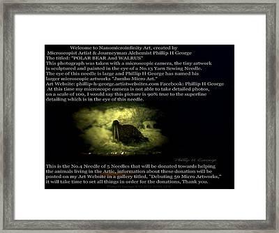 Close-up Photo No.1c Showcasing Polar Bear Needle No.4   Framed Print by Phillip H George