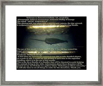 Close-up Photo No.2 Showcasing Polar Bear Needle No.2  Framed Print
