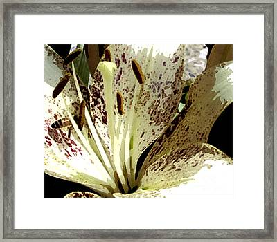 Close Up With Bee Detail 1 Framed Print by Bruce Tubman