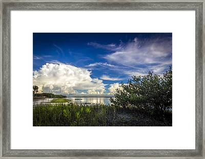 Close Your Eyes And See Framed Print by Marvin Spates