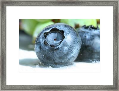 Closeup Of A Blueberry Framed Print by Sandra Cunningham