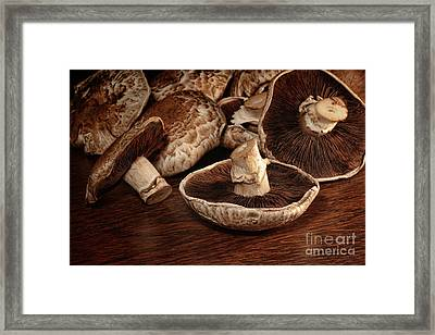 Closeup Of Fresh Portobello Mushrooms Framed Print