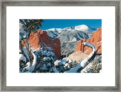 Clothed In White At The Garden Framed Print