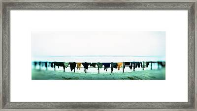 Clothes Drying At The Riverbank, Ganges Framed Print by Panoramic Images