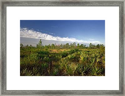 Cloud Line And Palmetto. Triple N Ranch.   Framed Print
