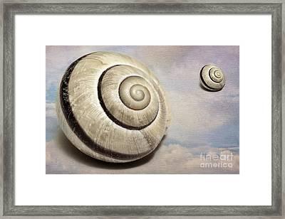 Cloud Shells Framed Print