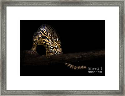 Clouded Existence Framed Print by Ashley Vincent