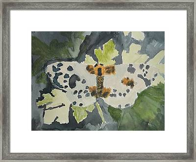 Clouded Magpie Watercolor On Paper Framed Print by William Sahir House