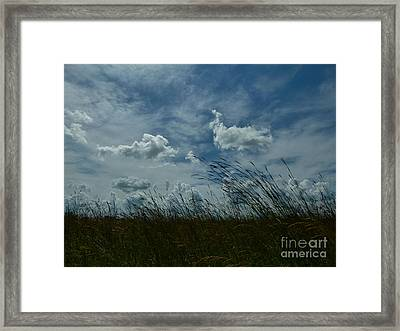 Clouds And Grass Framed Print