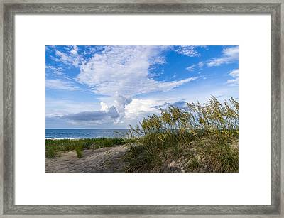 Framed Print featuring the photograph Clouds And Sea Oats by Gregg Southard