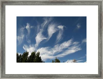 Framed Print featuring the photograph Clouds by David S Reynolds